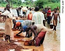 People look into their sifter to find a diamond stone, in Tortya, Ivory Coast