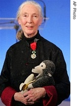 Britain's world-renowned primates expert Jane Goodall